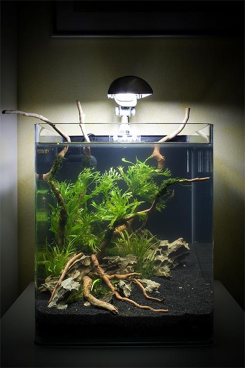 Аквариум Aquatlantis NANO CUBIC 40 (40 л) - 2