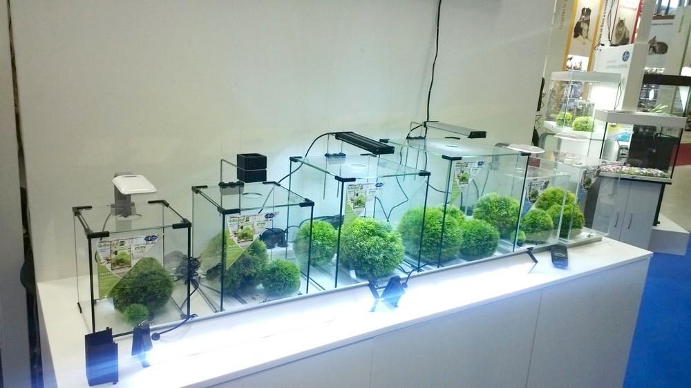 Аквариум Biodesign Q-Scape 6,5 л - 2