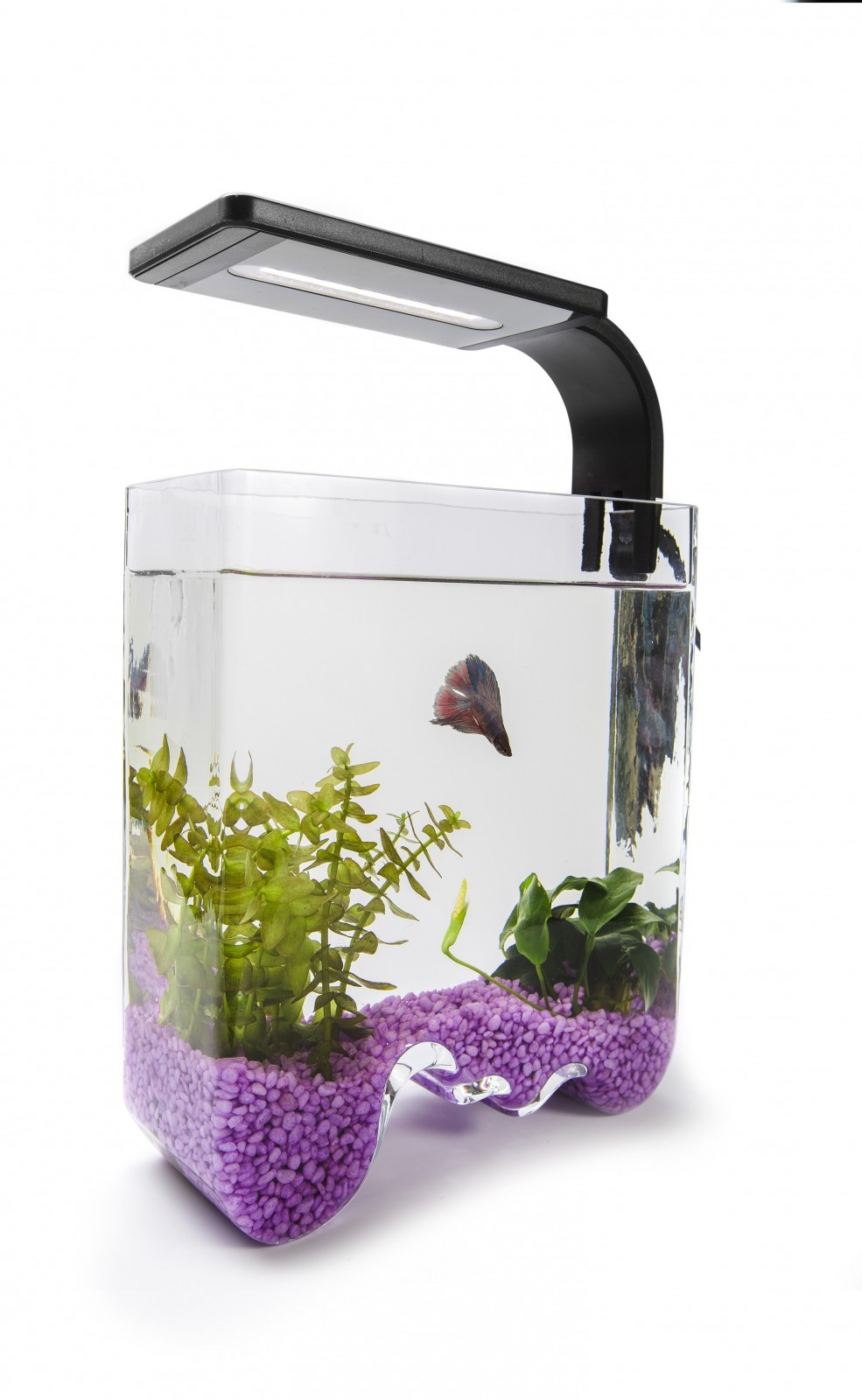 Аквариум Aquael Aqua Decoris Welle 3,5 л - 1