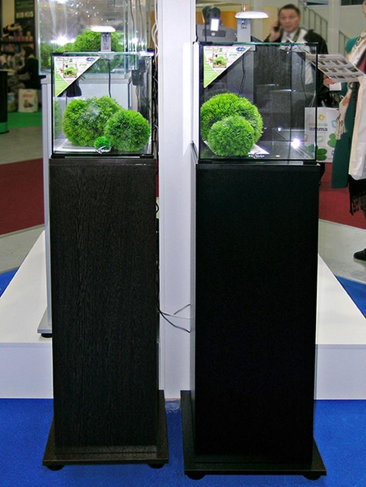 Аквариум Biodesign Q-Scape 20 л - 2