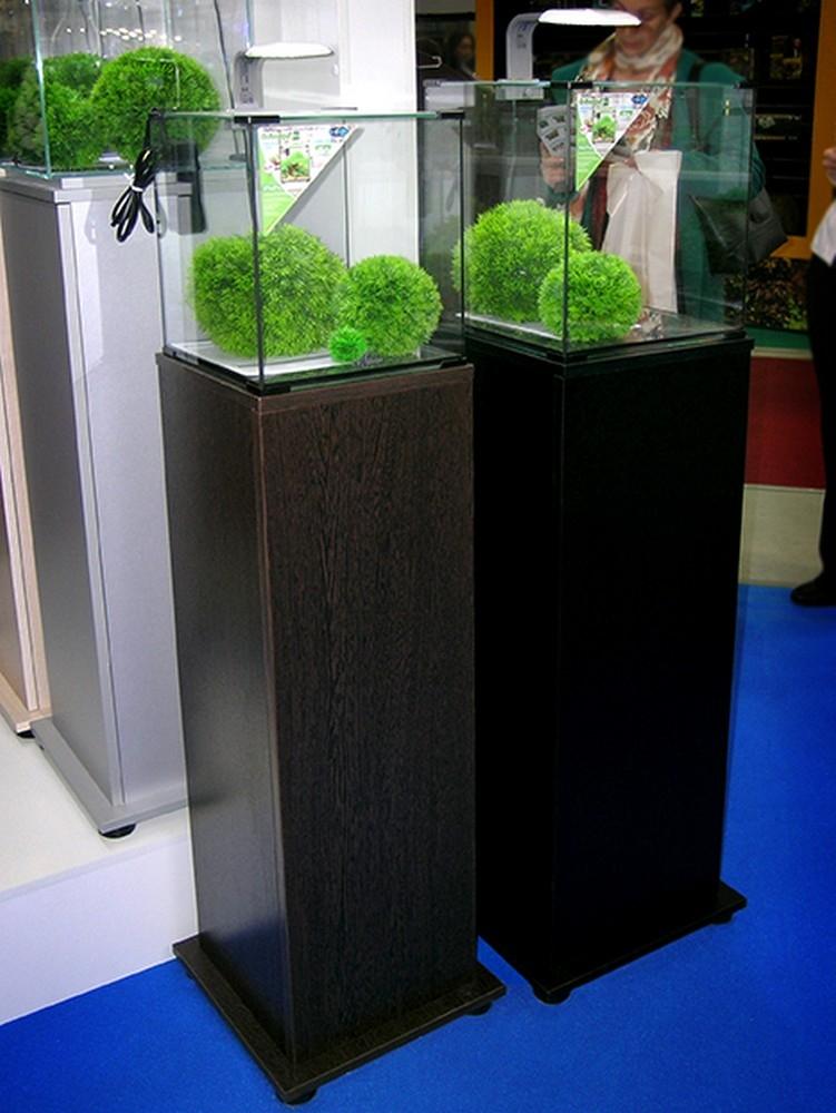 Аквариум Biodesign Q-Scape 20 л - 3