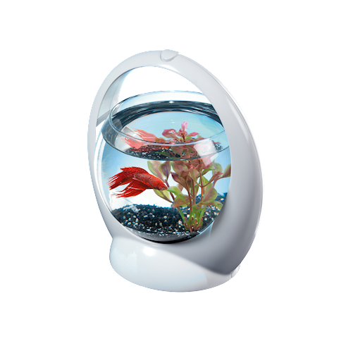 Аквариум Tetra Betta Ring (1,8 л)