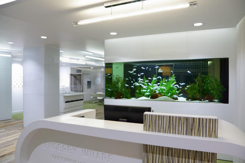 Влияние аквариума на человека