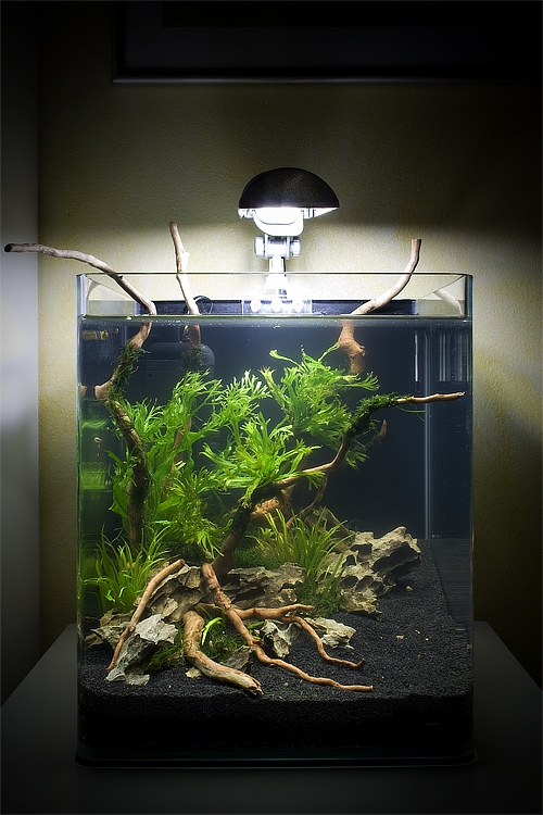 Аквариум Aquatlantis NANO CUBIC 30 (30 л) - 2