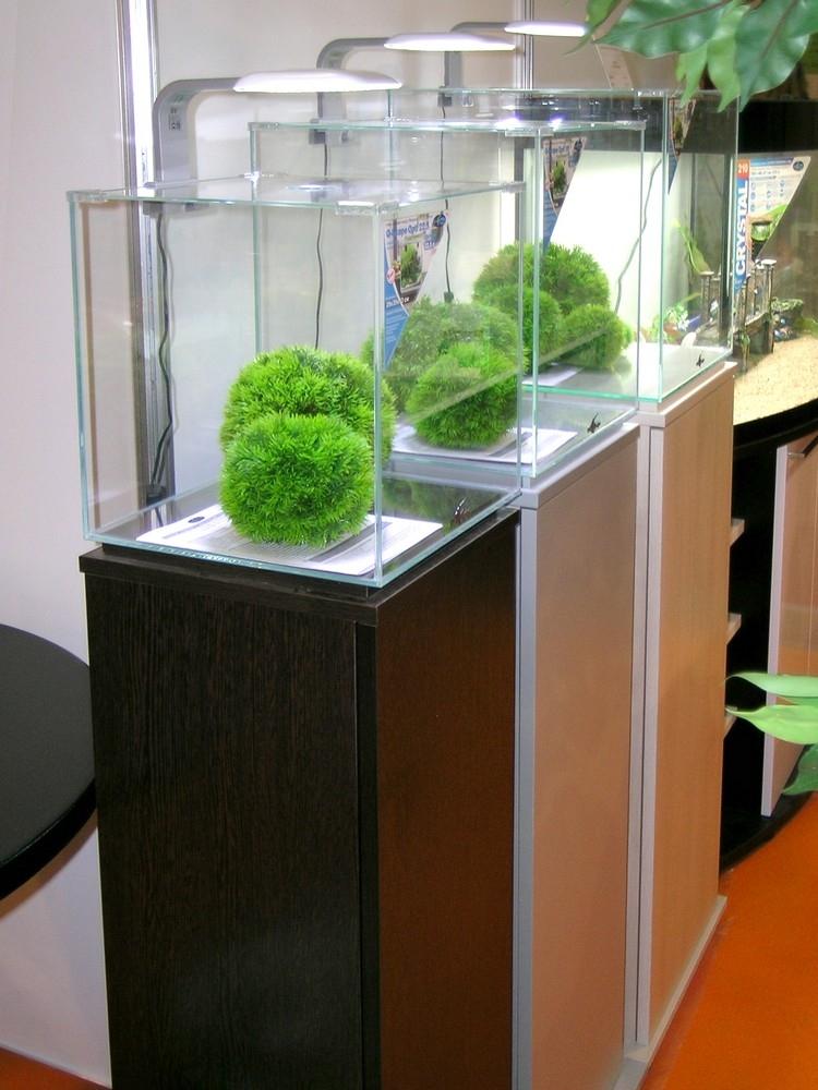 Аквариум Biodesign Q-Scape Opti 50 л - 5