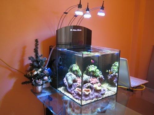 Аквариум Aqua Medic Yasha (36 л) - 1