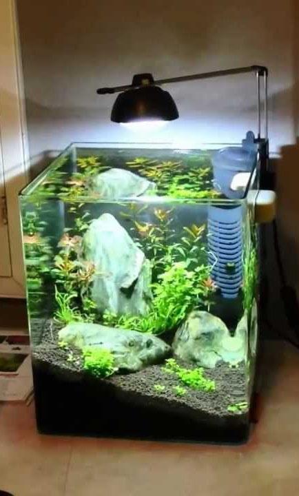 Аквариум EHEIM Aquastyle 35 (35 л) - 1