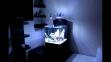 Аквариум Aqua Medic Blenny (80 л) - 2