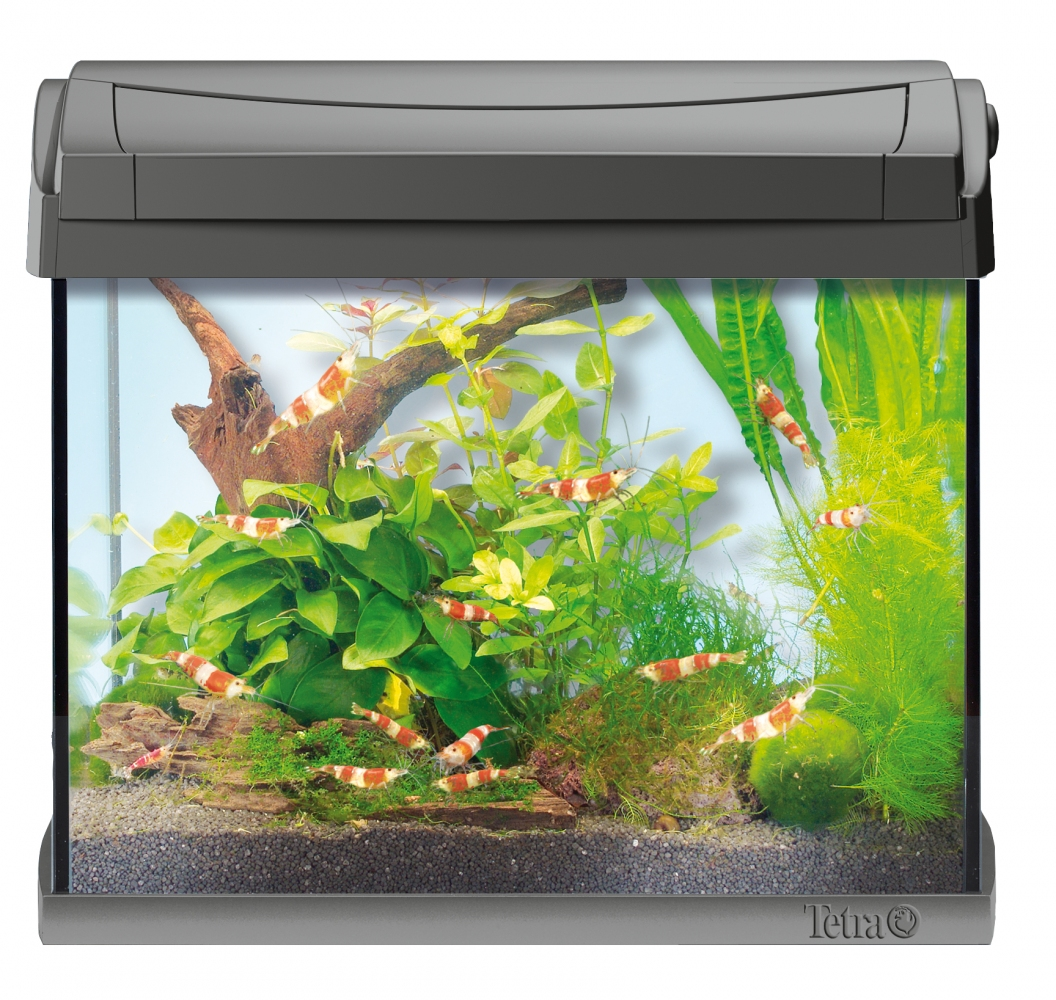 Аквариум Tetra AquaArt LED Shrimp (20 л)