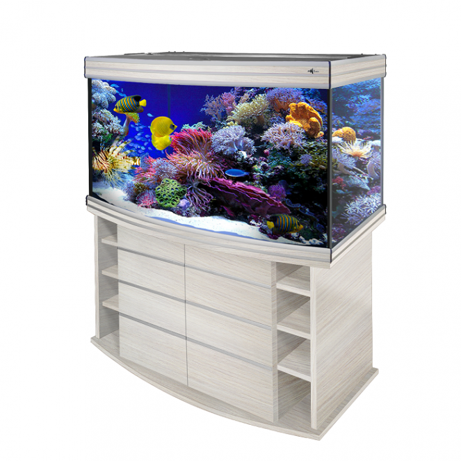 Аквариум Biodesign Altum Panoramic 300 (300 л)