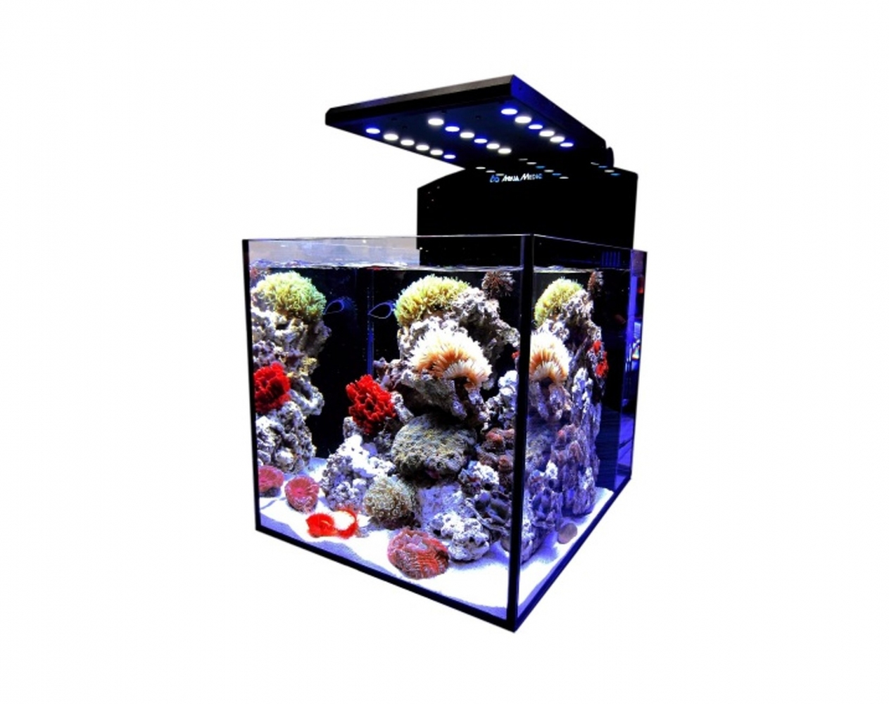 Аквариум Aqua Medic Blenny advanced (80 л)
