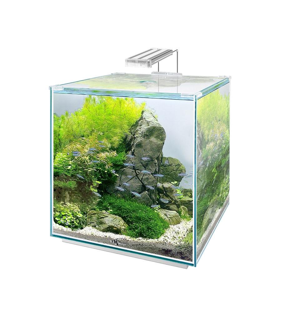 Обои прикольный аквариум на рабочий стол скармливают