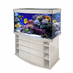 Аквариум Biodesign Altum Panoramic 300 (300 л) - 17403